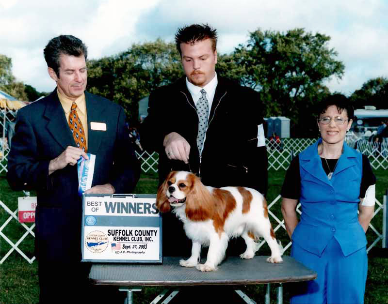 Champion Rive Oak Sundance Kid